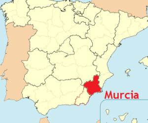 Curso Zen en Murcia entre semana